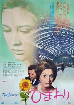 ひまわり(ポスター洋画/1970年ブエナ・ヴィスタ)