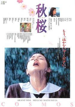 秋桜(コスモス/シネマピッコロ・チラシ邦画)