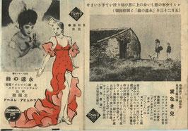 永遠の緑/家なき兒(チラシ洋画)