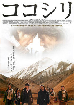 ココシリ(チラシ・アジア映画)