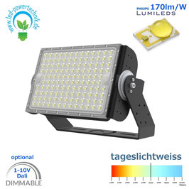 LED Sniper T900 - Fluter 300W | Abstrahlwinkel 30°, 60°, 90° & asymetrisch | 51.000 lm | 6000K tageslichtweiss | IP66 | 1-10V dimmbar | od. DALI dimmbar