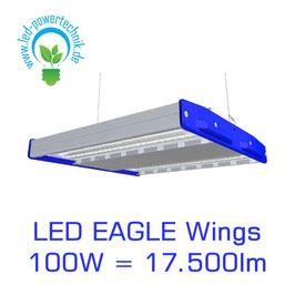 LED Eagle Wings Hallenleuchte 100W | 60°, 90°, 120° Abstrahlwinkel | 17.500 lm | 3000K - 6000 K | IP54 | 1-10V dimmbar | 3 Sensoren zur Auswahl