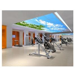 LED Deckenhimmel 3.00m x 3.00m - Set 25 Stück LED Panel 62x62cm, 48W, 6000-6500k, 0-10V dimmbar, inkl. Druck und Netzteil, Rahmenfarbe weiß