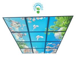 LED Deckenhimmel 1.80m x 2.40m - Set 12 Stück LED Panel 62x62cm, 48W, 6000-6500k, 0-10V dimmbar, inkl. Druck und Netzteil, Rahmenfarbe weiß