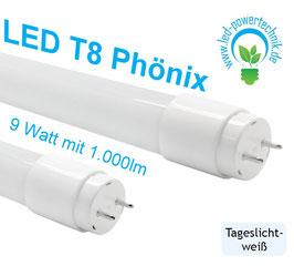 LED T8 Phönix 060cm, 9W, 865, 1.000lm, 6000K