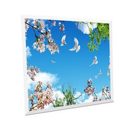 LED Deckenhimmel -  Panel 60x60cm, 48W, 6000-6500k, 0-10V dimmbar, ultraflach, inkl. Druck und Netzteil, Rahmenfarbe weiß