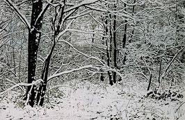 Wolfgang Tambour - Winterlandschaft