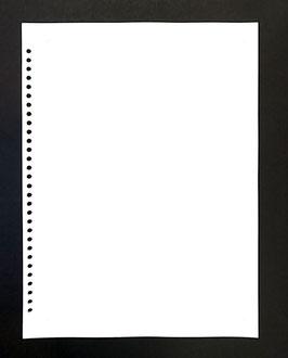入替え用中紙(1パック20枚入り)