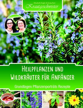 Heilkräuter und Wildpflanzen für Anfänger