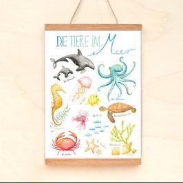 """Poster """"Die Tiere im Meer"""" DIN A3"""