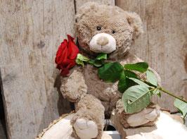 Knuffelbeer met Rode Roos