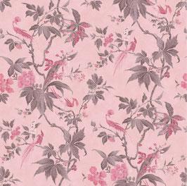 Paradise - Pink