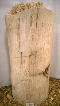 VH-0155 Maße 127/45/52cm