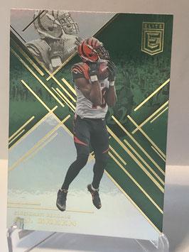 AJ Green (Bengals) 2016 Elite Green #67