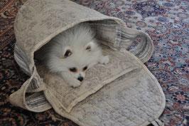 Emilybag 2 in 1 - Tragetasche und Körbchen für die ganz Kleinen (Kleinspitz und Chihuahuas)