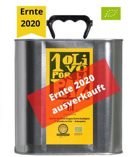 1 Olivo por la Paz - Arbequina (BIO) - 2,5 l - Ernte 2020