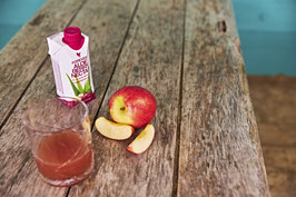 330ml Forever Aloe Berry Nectar™