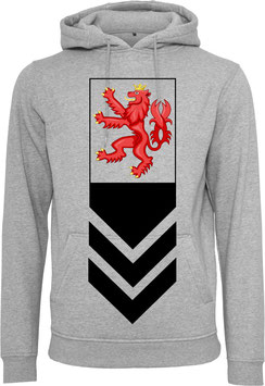 RED LION HOODY GREY