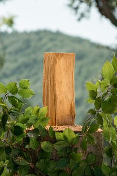 1 rm Brennholz Buche 25 cm