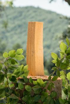 1 rm Brennholz Buche 33 cm