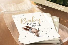 Meilensteinkarten Baby (Mängelexemplar)