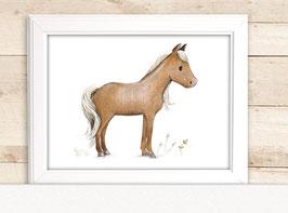 "Kinderbild ""Pferd"""