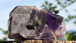 Stück tiefvioletter Fluorit
