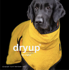 Dryup Cape, YELLOW