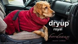 Dryup Royal bordeaux