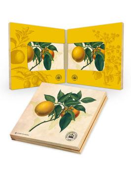 Acryl-Untersetzer in Geschenkschachtel / Orange ›Kew Gardens‹