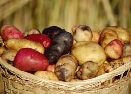 Kartoffel-Mischung