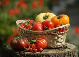 Tomaten-Mischung