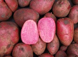 'Heiderot' Kartoffel