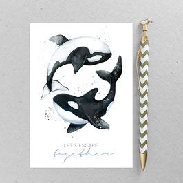 Orkas – A6 Postkarte