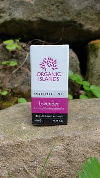 Ätherisches Lavendel Öl 100% Bio 10ml