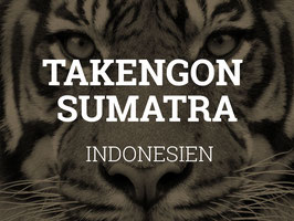 Rohkaffee: Indonesien, Takengon Sumatra (1kg)