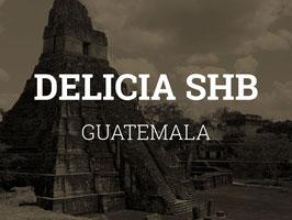 Rohkaffee: Guatemala SHB (1kg)