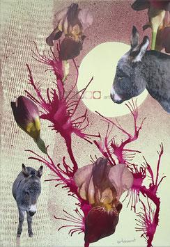 Esel - Collage auf Keilrahmen