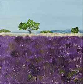 Lavendelfeld 20 x 20 x 1,5 Nr. 2