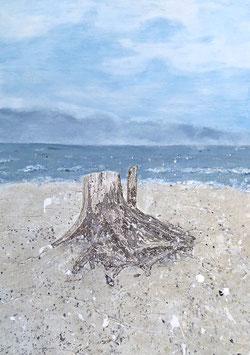 Wurzel am Strand von Rügen 50 x  70 x 2 cm