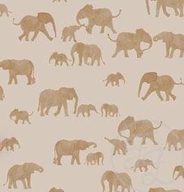 Bandeau ELEPHANTS (Nouveauté)