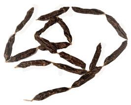Pferdewürstlis 250g ca. 7 cm.