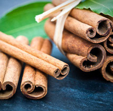 Cinnamon Bark Blended Essential Oil