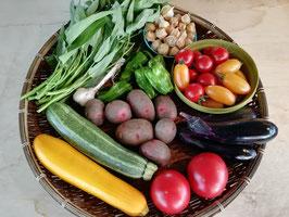 廣田農園のBio野菜セット(送料込み)