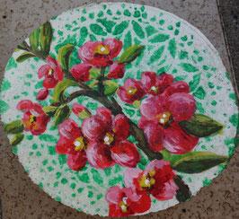 Rosarote Blüten auf grüner Spitze