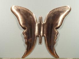 Papillon N°1 160x145