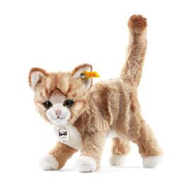 Mizzy Katze 099342