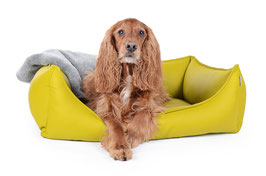 Hundebett Dreamcollection KIWI