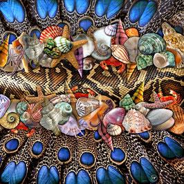 Seidentuch: Muschelschlange