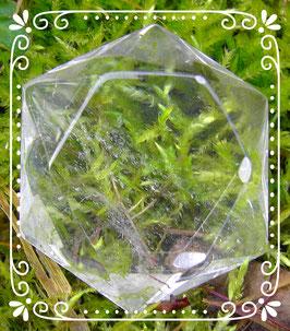 Bergkristall Feenstein